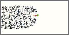 Noureddin Zarrinkelk >> Illustration