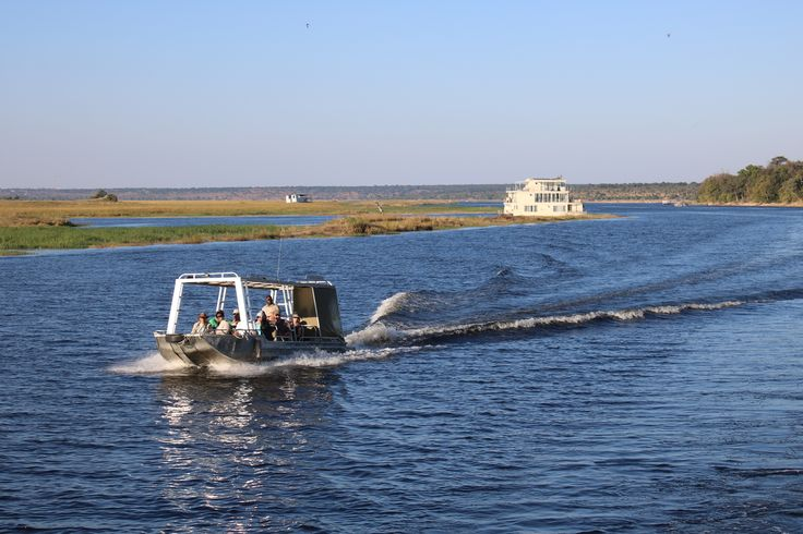 Game cruise from the Chobe Princess houseboat on the banks of the Chobe National Park in Botswana     #AfricaSafari #RiverSafari #GameCrusie #Botswana #ChobeRiver