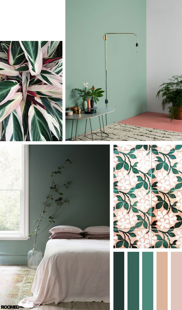 Colorboost: a fresh color palette with green and pink, inspired bij the Calathea! - Roomed