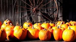 Image result for fall facebook cover photos