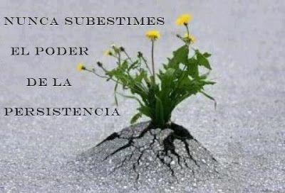 Nunca subestimes el poder de la persistencia
