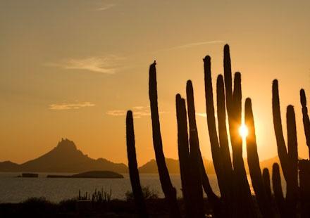 Guaymas - San Carlos, Sonora | VisitMexico