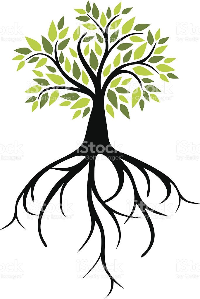 Vector Illustration Tree: Silhouette Of A Tree Roots Clip Art, Vector Images