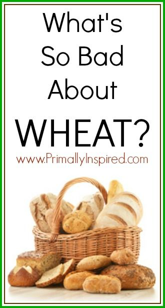 """Wonder what's all this fuss about going """"gluten-free"""" these days? This article is a must-read! http://www.primallyinspired.com/whats-wrong-with-wheat/#comment-44142"""