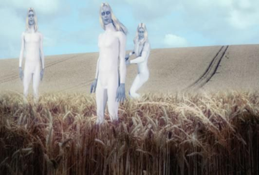 British Cop Witnesses Tall White Aliens Inspecting Fresh Crop Circle | The Controversial Files
