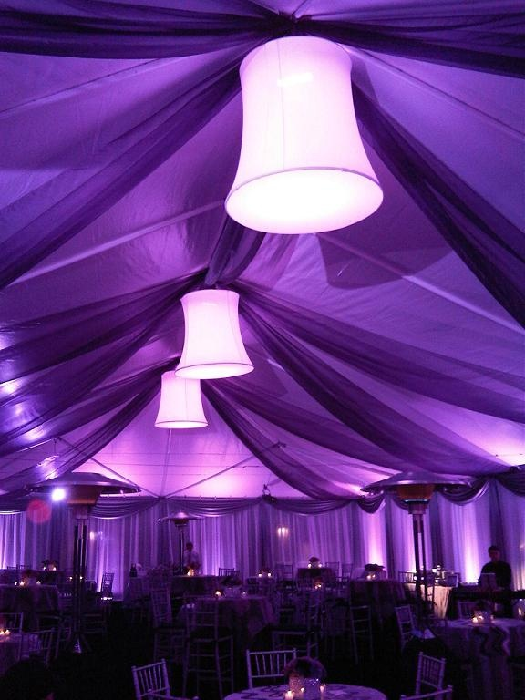 purple ceiling treatment