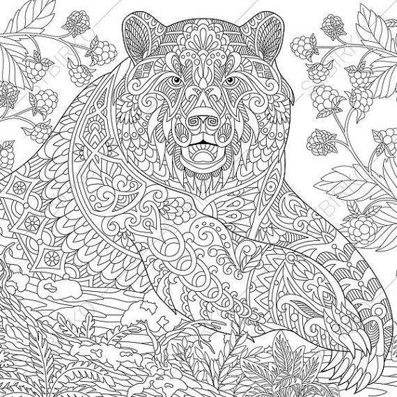 Adult Coloring Pages Grizzly Bear Zentangle Doodle