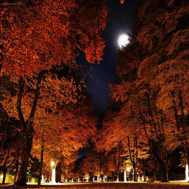 "500px / Photo ""the moon"" by toni fernandez"