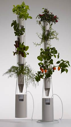 Grow Jar City dwellers that want to grow their own vegetables and herbs year-round have limited options. The Grow Jar makes it simple — it requires a shockingly small amount of space, very little water, no soil, no power and no pesticides. Using a simple passive hydroponic process, the plant receives the exact amount of water, fertilizer and air based on the plant's needs.