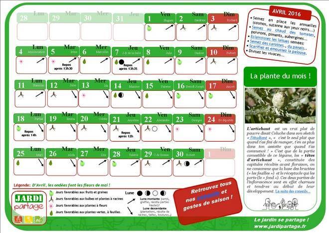 17 meilleures id es propos de calendrier lunaire sur - Calendrier des champignons comestibles ...