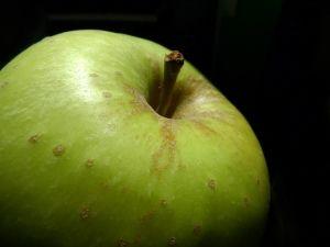 Omas Gicht Hausmittel - Apfelsäure löst Harnsäurekristalle aus den Gelenken