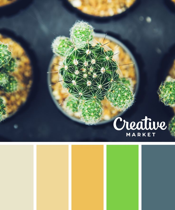 15 fresh color palettes for spring color combinations color schemes