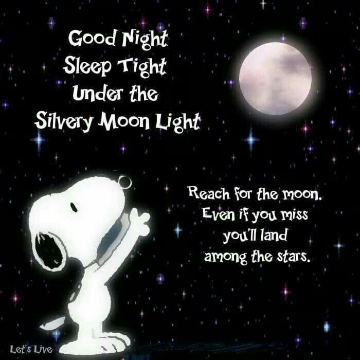 "Good Night. Sleep tight under the silvery moonlight. Reach for the moon. Even if you miss, you'll land among the stars. (""hmm,nice ♥️"") --Peanuts Gang/Snoopy"