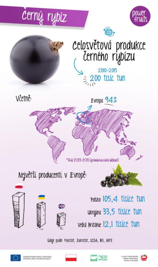 Power Fruits ví o ovoci všechno. Přečtěte si zajímavá fakta o černém rybízu!