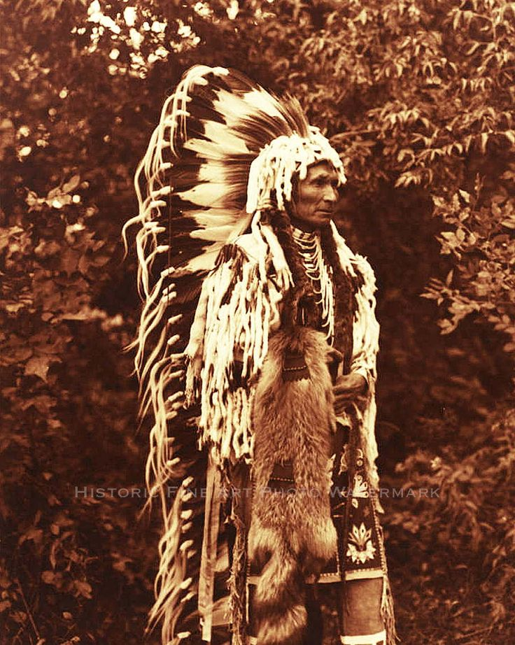 17 best images about native american historic photos on for American indian decoration