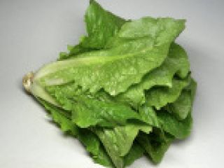 Fogyaszt 1. Római saláta La Laitue Romaine