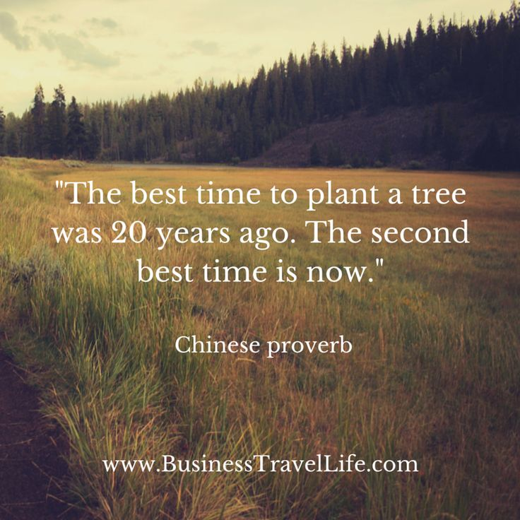 Business Quotes 26 Motivational Quotes That Will Inspire: 93 Best Motivation Monday Images On Pinterest