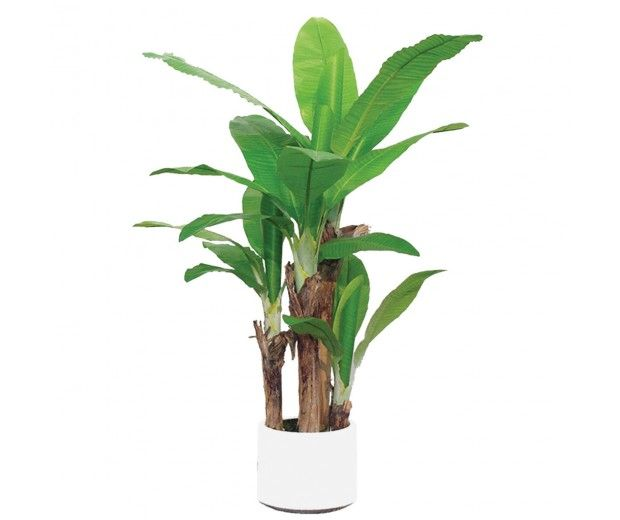 artificial banana tree spacegreen