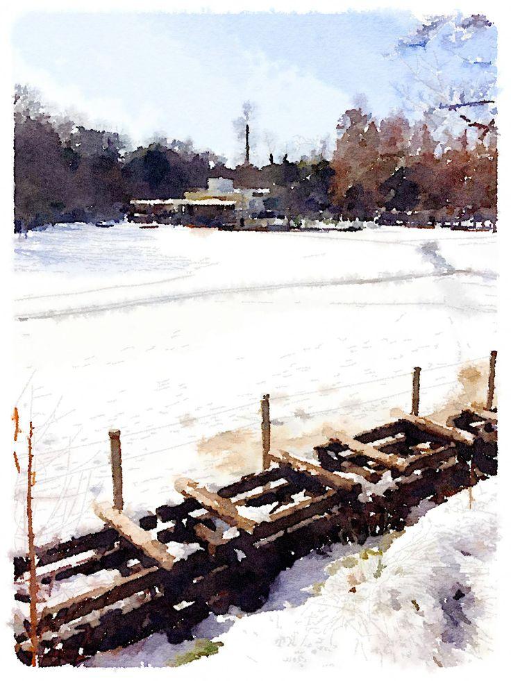かいぼり中の井の頭池に雪が積もって溶けて小川ができた。