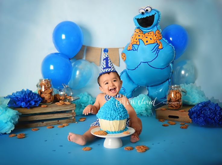 Cookie Monster Themed Smash cake by Courtney Anderson - Cotton Cloud Photography In Campbelltown NSW AU