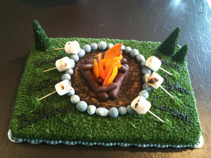 Campfire Cake My Cakes And Other Stuff Campfire