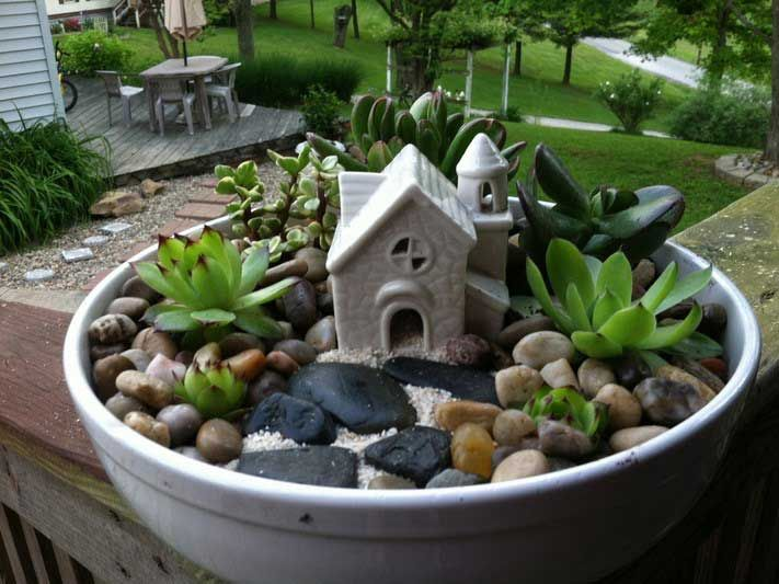 25 indoor and outdoor succulent gardens of all sizes for Succulent dish garden designs