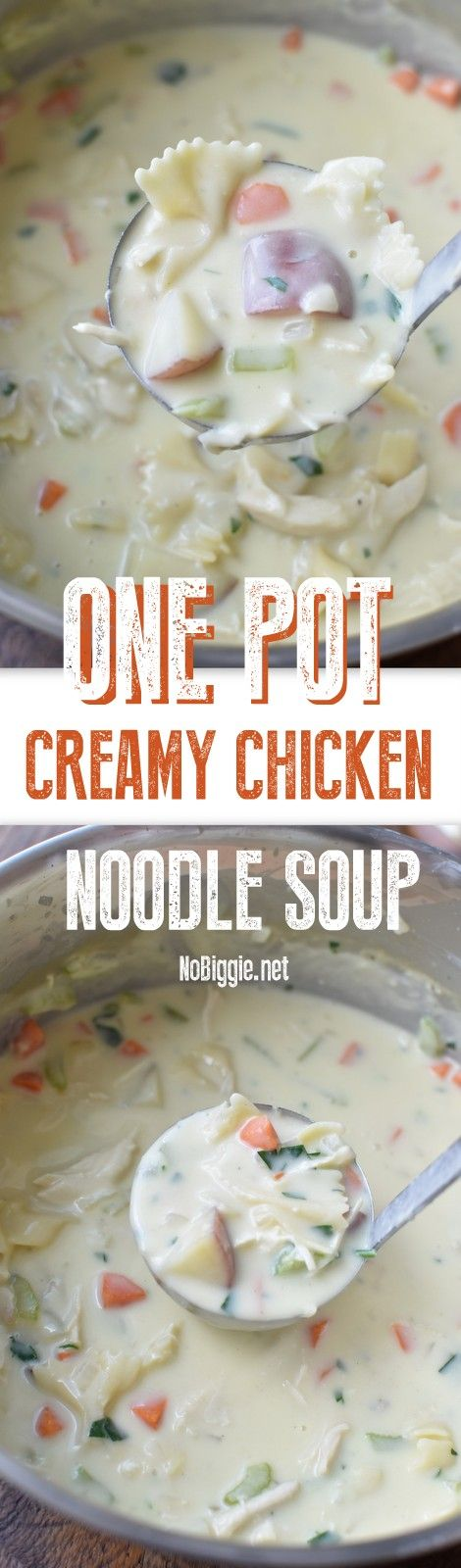 We are big fans of a one pot meal the whole family will love, and this one pot creamy chicken noodle soup is just that. Sometimes soup and salad makes a great dinner, and definitely a yummy lunch the next day…that's hoping you have any leftovers. We have shared a few chicken noodle recipes here …