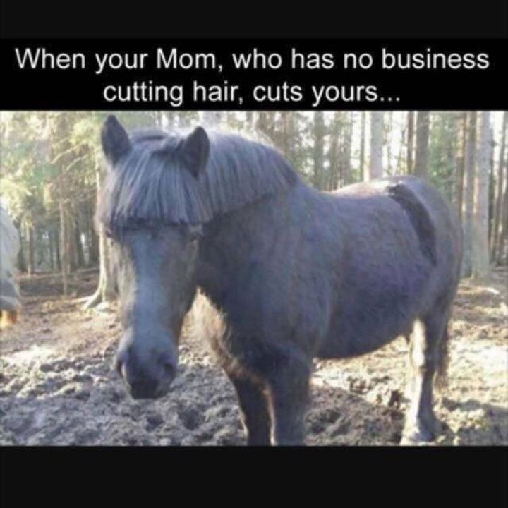 Really Funny Memes Humor That Will Make You Laugh - 23