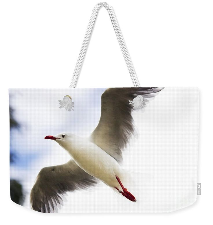 Flight Weekender Tote Bag featuring the photograph Dusk Flight by Jorgo Photography - Wall Art Gallery