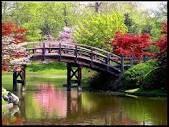 puente primaveral