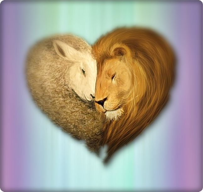 "Seriously in love with this.... Makes me think of Twilight... ""the lion fell in love with the lamb..."""