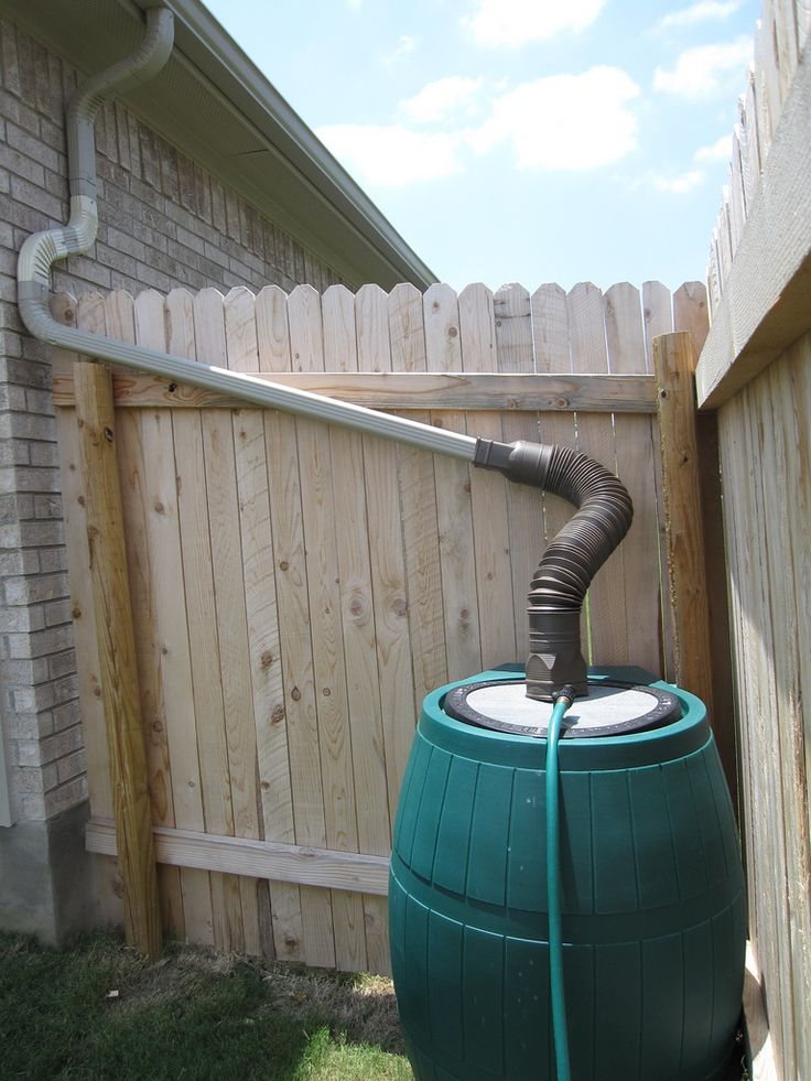 How to Harvest Rainwater for your garden - by Green Living Ideas    I will stand in line and get a city rain barrel this year!