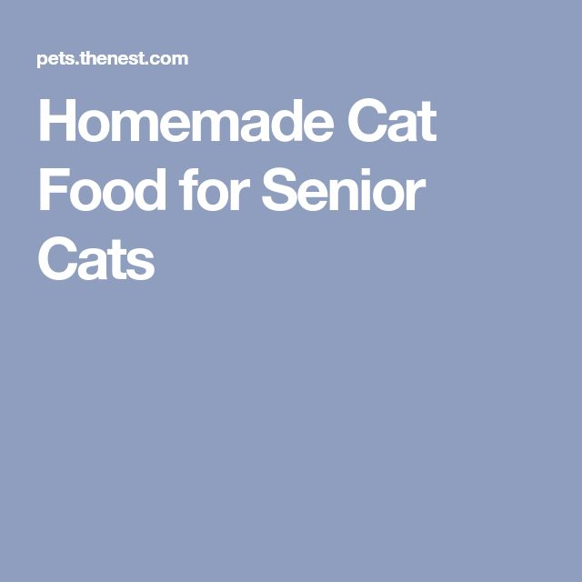 Homemade Cat Food for Senior Cats