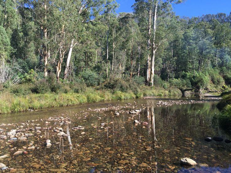 Howqua River near Mansfield Victoria