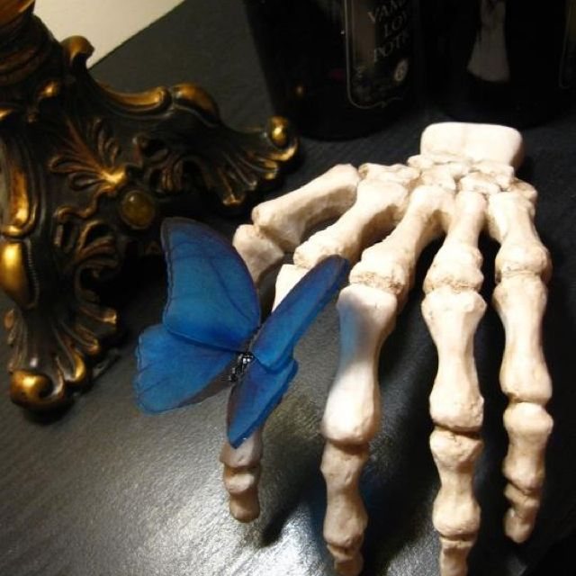Semi-home made Halloween Decor....Shrinky dink butterfly that I made and a $2.56 resin skeletal hand that I aged....I may just want to leave this out all year long because it reminds me of Tim Burton's Corpse Bride :)