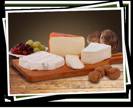Mild kaasplankje. Dit kaasplankje bestaat uit een milde roombrie en een zachte Port Salut, het bekende Franse kaasje met de oranje korst. Daarnaast de Magor. Lees meer over deze kaasplank: http://vomar.kaas.nl/kaasplankje/mild-kaasplankje