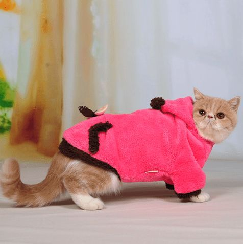 Amazing Cat Fleece