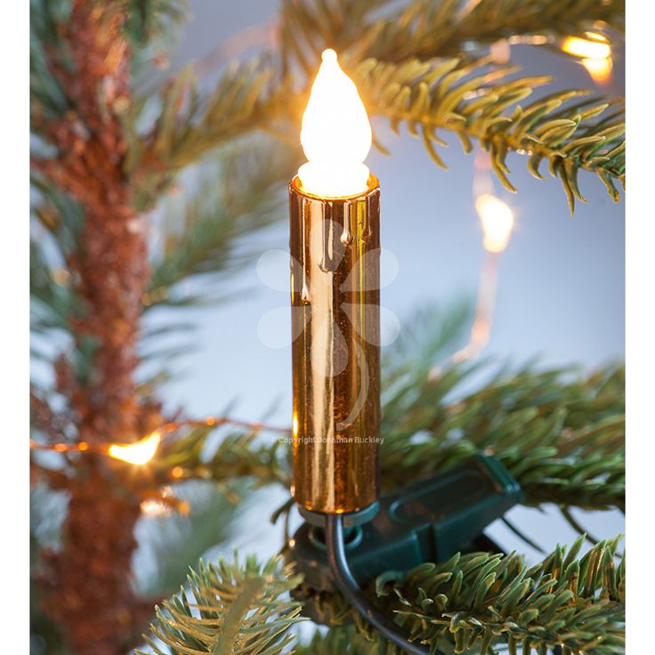 Buy christmas tree candles from sarah raven our sets of clip on candle lights give a classy makeover to your tree