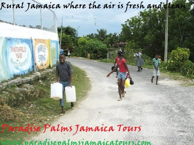 RURAL COMMUNITIES IN JAMAICA  Communities in the rural areas in Jamaica behave so much differently from those in the urban areas. In many rural areas, people know all their neighbors and feel invested in each other's lives.   If only the spirit of rural Jamaica could be bottled and spread across the island then we would have an entire country of people who feel connected with each other, the way they do in rural areas and some smaller islands. What are your thoughts?