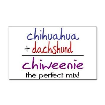 Amazon.com: Chiweenie PERFECT MIX Pets Sticker Rectangle by CafePress - White: Furniture & Decor
