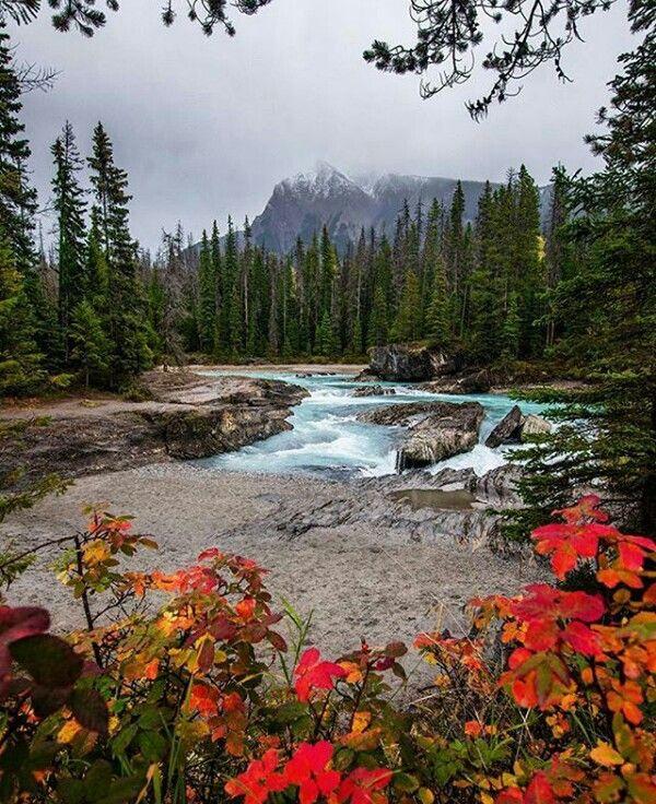 Pin De Lezly Em My Likes Natureza Lugares Incriveis Lugares
