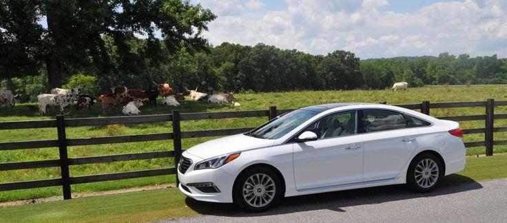 2015 Hyundai Sonata Limited Review