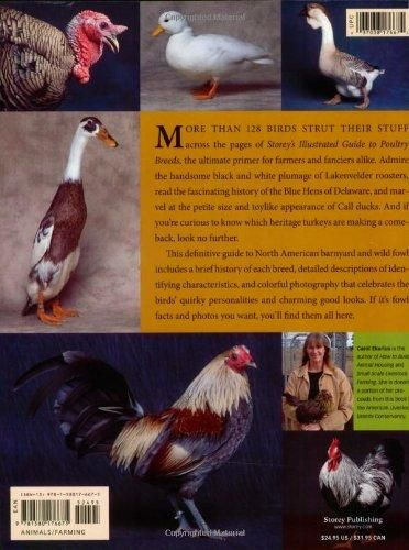 Storey's Illustrated Guide to Poultry Breeds: Chickens, Ducks, Geese, Turkeys, Emus, Guinea Fowl, Ostriches, Partridges, Peafowl, Pheasants,
