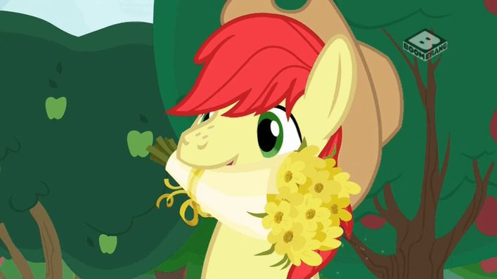 #1467654 - animated, boomerang (tv channel), bright mac, flower, pear butter, safe, screencap, sneezing, spoiler:s07e13, the perfect pear - Derpibooru - My Little Pony: Friendship is Magic Imageboard