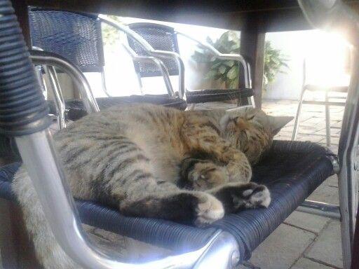 Un merecido descanso...Provincia Hostel Valledupar Colombia