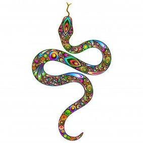 rainbow serpent - Buscar con Google