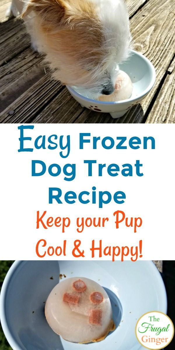 Easy Frozen Dog Treat Recipe Keep Your Pup Happy Cool Money