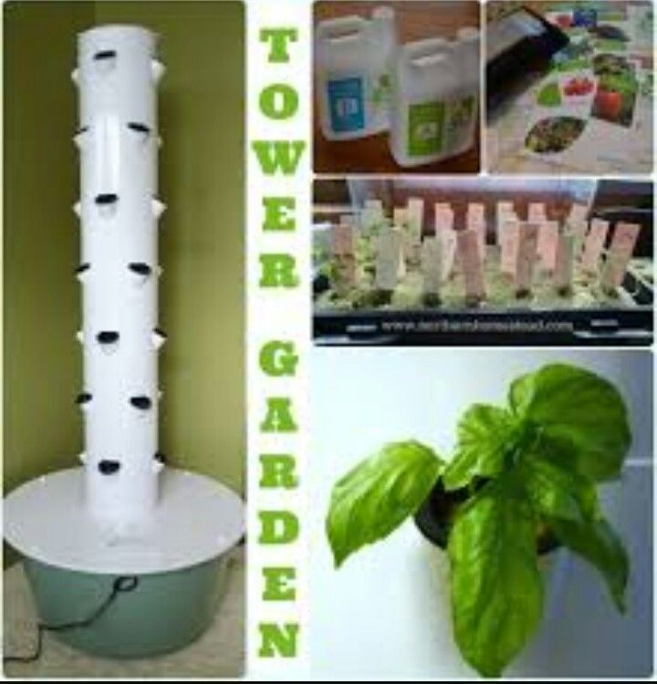 20 best TOWER GARDEN images on Pinterest | Gardening, Vegetable ...