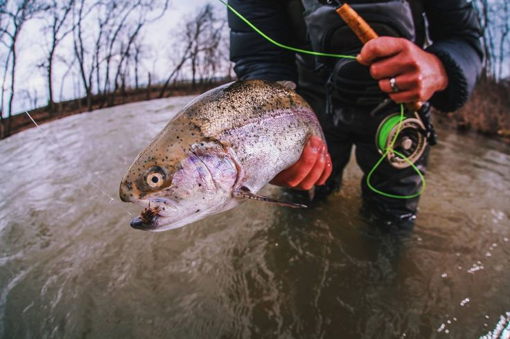 Most of the world is covered by water a fisherman 39 s job for Fly fishing jobs