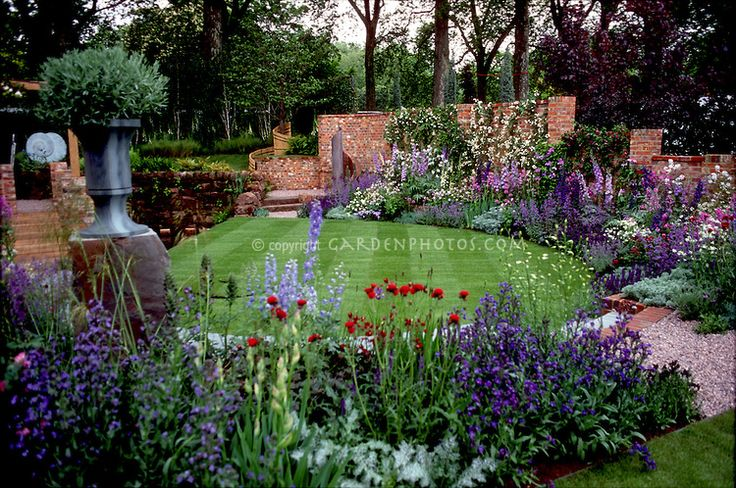 Beautiful lawn and flower garden plant flower stock - Plants with blue flowers a splash of colors in the garden ...